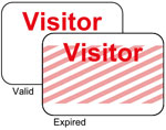 Brady Visitor Badges LITE