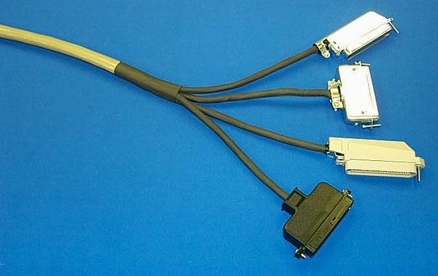 Digi Fan-out Cable