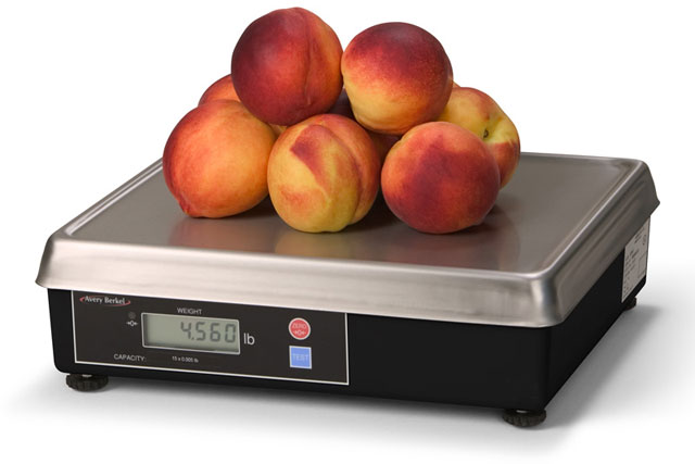 Avery Weigh-Tronix 6720 Scales