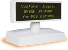 Photo of Epson DM-D500