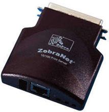 Zebra P1032272